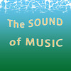 The SOUND of MUSIC. Main Street Theatre. The Sayreville and Old Bridge hills were alive with beautiful music! :
